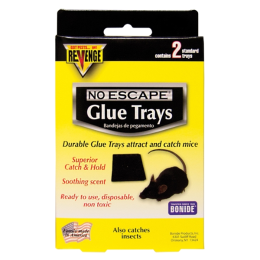 Revenge Baited Glue Trays for Mice 2 Pack