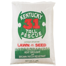 Kentucky 31 Tall Fescue Lawn & Garden and Field Seed 5 lb