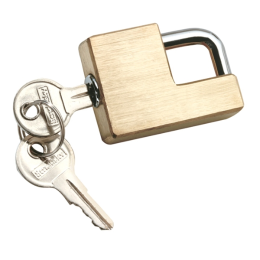 Reese Towpower Compact Coupler Lock Brass