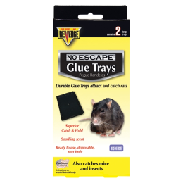 Revenge Baited Glue Trays for Rats 2 Pack