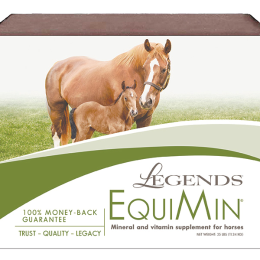 Southern States Legends EquiMin Horse Mineral Block 25 lb