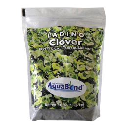 Southern States Ladino Clover 3 lb