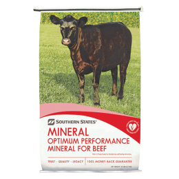 Southern States Genetic Expression Weathershed Beef Breeder Mineral 50 lb