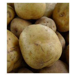 Potato Superior 1 lb