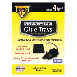 Revenge Baited Glue Trays for Mice 4 Pack
