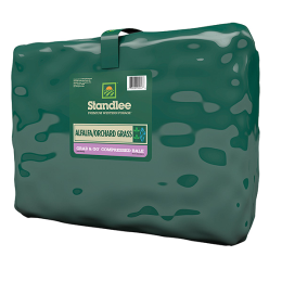 Standlee Premium Alfalfa/Orchard Grass Grab & Go Compressed Bale 50 lb