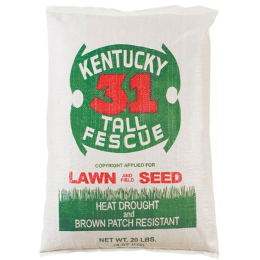 Kentucky 31 Tall Fescue Lawn & Garden and Field Seed 20 lb