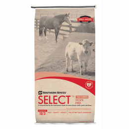 Feeding Beet Pulp to Horses   Southern States Co-op