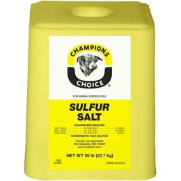 Champion 's Choice Sulfur Salt Block 50 lb