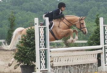 A horse and rider clear a jump during a show