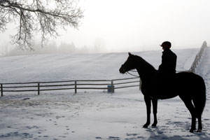 Horse and rider exercise in the winter
