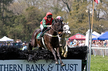 Will and Brute clear a hurdle.
