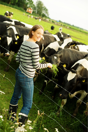 A woman manages her cattle pasture