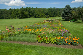 Attractive When Starting A Cut Flower Garden, Take The Time To Prepare The Bed And  Plan What Flowers You Want To Plant. Find A Spot In Your Yard That Is Not  Clearly ...