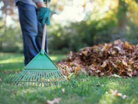 Raking Leaves Bag Vs Mulch And Compost Southern States