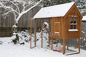 A chicken coop in the winter