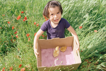 Girl with a box of baby chicks.