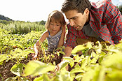 A father and daughter practice safe gardening techniques