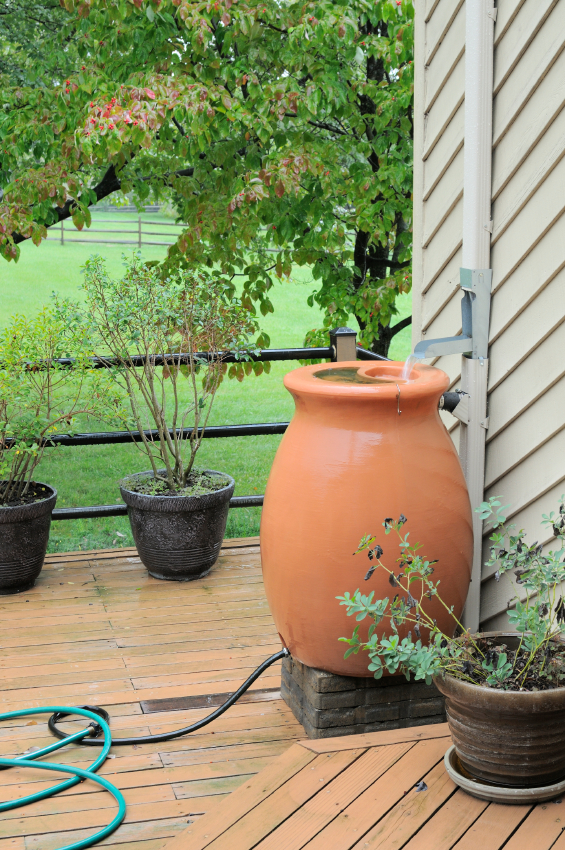Making a rain barrel is easy and can save you money.